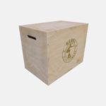 3 TIER TRAPEZIUM PLYO BOX