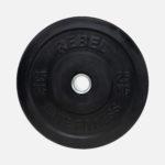 Black rubber bumper plate_25kg