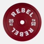 Calibrated Steel Plates_25kg_Front
